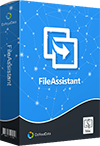 File Assistant